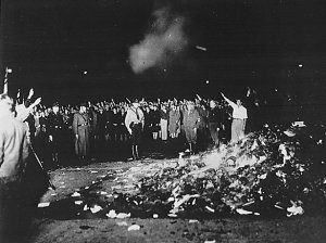 quema de libros II Reich taringia