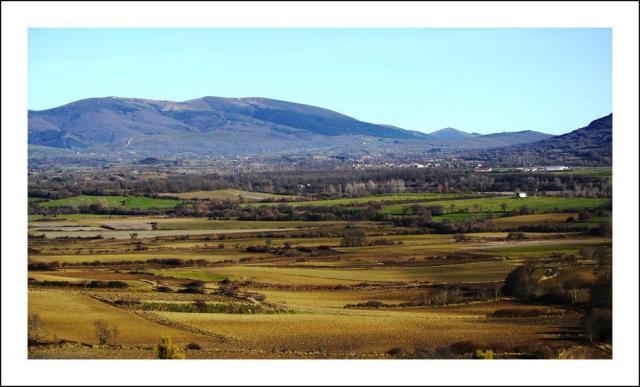 montia-mira-al-norte